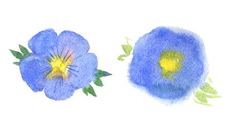 Flax flower, blue flower, isolated on white background, watercolor illustration Standard-Bild - 101534791