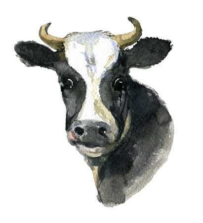 Portrait of a cow isolated on white background, watercolor illustration Standard-Bild - 101644358