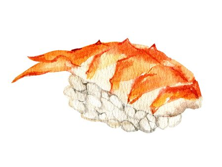 Nigiri sushi with with tiger shrimp, isolated on white background, watercolor illustration Foto de archivo - 135137743