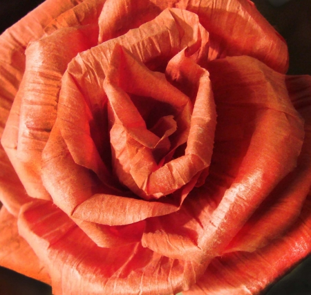 paper red rose, petals, opening flower bud, hand made
