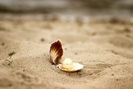 Shell with a pearl close-up lying on the beach sand with sea background.