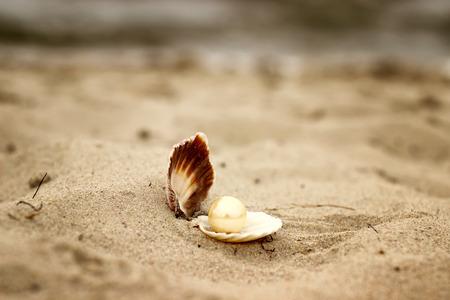 Shell avec une perle close-up couché sur le sable de la plage avec vue sur mer fond.