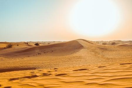 Cerca de las dunas de arena del desierto. Dubái 2019. Foto de archivo