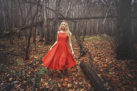 Mujer bonita joven en el vestido rojo está caminando en el bosque místico brumoso con hojas caídas