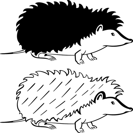 Silhouette hedgehog on white background Vector