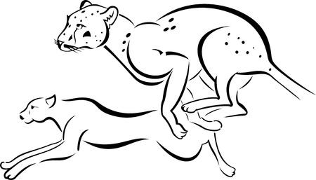 cartoon jaguar: Monochrome illustration of two running Leopard