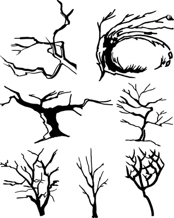 dead tree: Collection of tree silhouettes  Easy to edit any size  Illustration