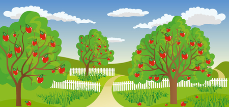 appletree: Ilustration of a rural landscape with apple tree in a calm and tranquil environment