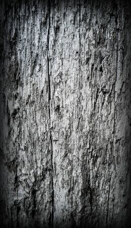 Background rude wood texture close up in dark gray color