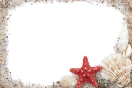 conch shell: photo frame with shells and sea salt