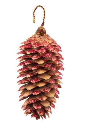 decor fir cone photo