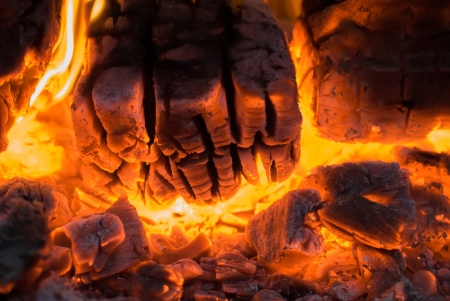 Burning firewood in flame of bonfire