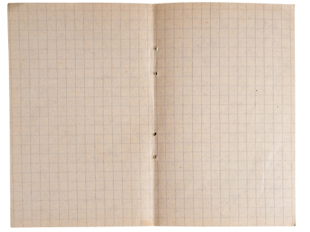 Page from a notebook with cages isolated on a white Stock Photo
