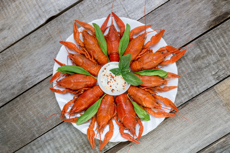 Plate with red boiled crayfish and herbs with white sauce on the side on a wooden table, background in rustic style Stock Photo