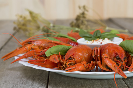 Plate with red boiled crayfish and herbs with white sauce on the side on a wooden table, background in rustic style, close-up, selective focus on one crawfish