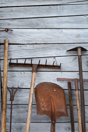 farm implements: The old rusty tradition tools, instruments, implements and farm or household equipment on wooden shed wall background