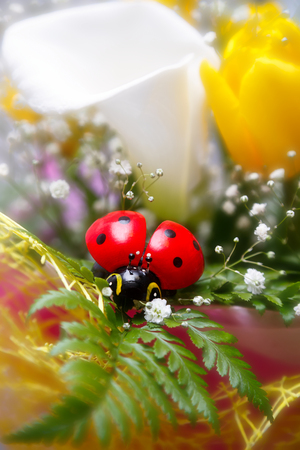 the toy ladybug on spring bouquet of calla lilies and yellow tulips