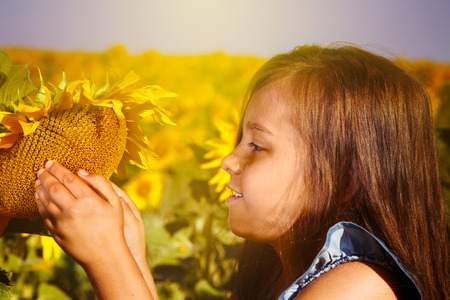 Little girl with a sunflower.Sunny summer day in a field of sunflowers. Stock Photo