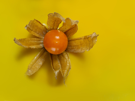 decoration with physalis and a yellow glaze and on the top for a cake