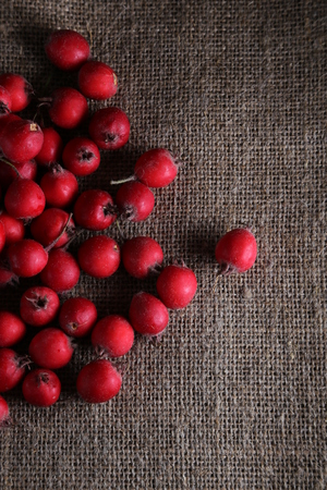 Ripe red hawthorn berries scattered on the sackcloth