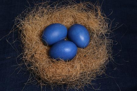 Easter eggs. Three blue eggs on the nest for Easter celebration.
