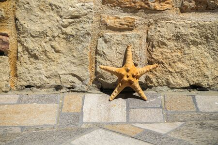 Starfish at the stone street wall of a south town. Hard light of midday sun. Hot weather. Summer holidays, vacation and travel concept.