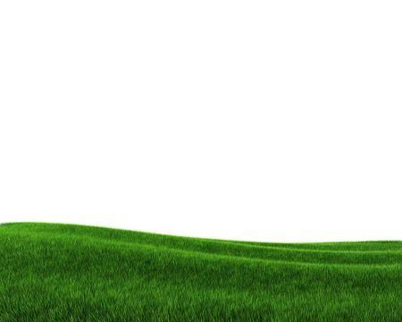 Green grass field (3d rendering)  Stock Photo - 5578064
