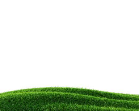 Green grass field (3d rendering) Stock Photo - 5643510