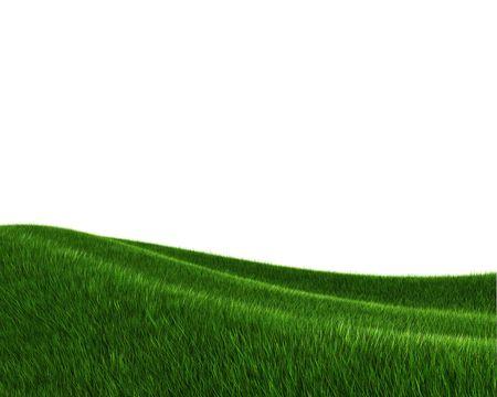 Green grass field (3d rendering) Stock Photo - 5643479