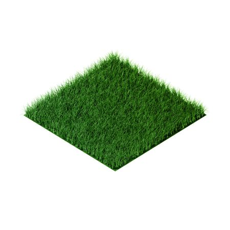 orthographic: Green grass field in orthographic view(3d rendering)