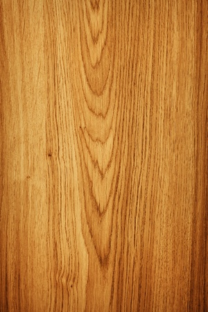 walnut tree: Wood texture