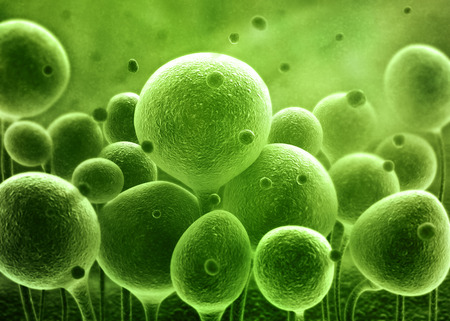 Bacteria spheres 3d illustration