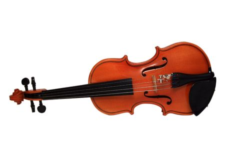 Violin on a white background. The size 116 photo