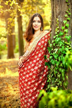 sari: Series. young beautiful brunette in the indian national dress