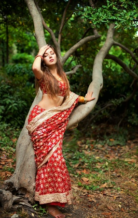 indian saree: Series. young beautiful brunette in the indian national dress