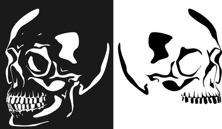 Series. Vector image of a human skull on a black and white background Stock Photo - 9770032