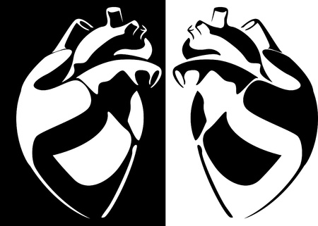Series. Vector image of the human heart on a black and white background Stock Photo - 9770031