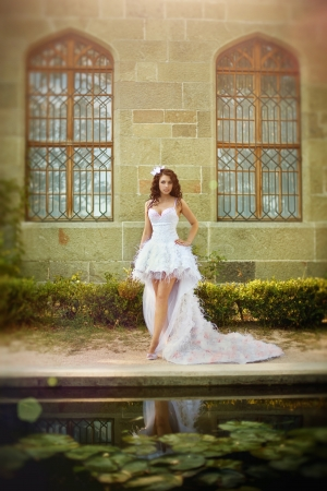 frock: Portrait of the young beautiful bride