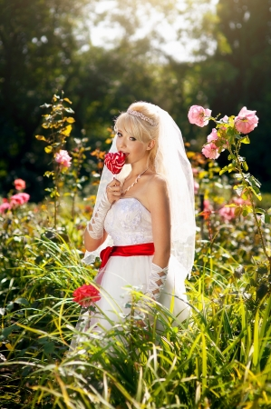Very beautiful blonde in a wedding dress. Stock Photo - 16624315