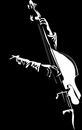bassist photo