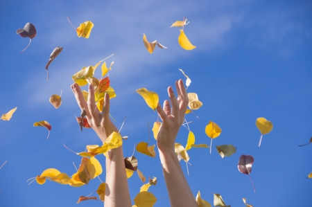 happy autumn Standard-Bild