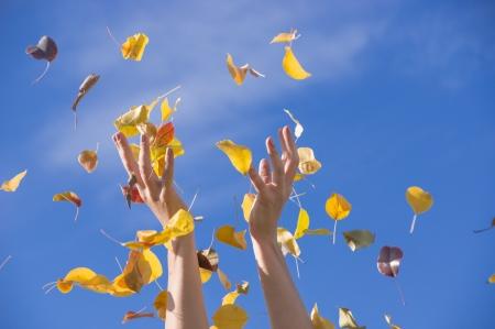 soaring: happy autumn Stock Photo