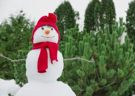 snowman with a red hat Standard-Bild