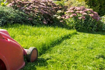 landscaped: mowing the lawn Stock Photo