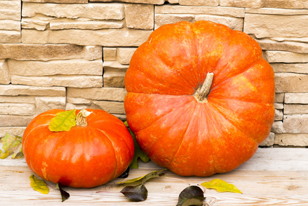two orange pumpkins