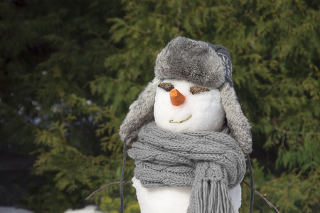 snowman with gray hat and scarf