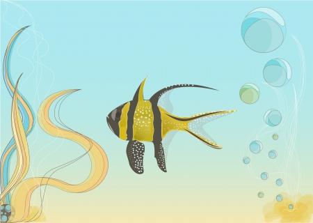 illustation: Illustation of sea