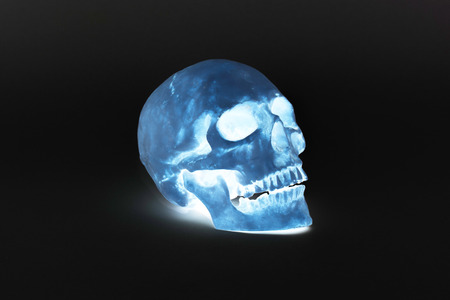 eye socket: Human Skull - Stock Image
