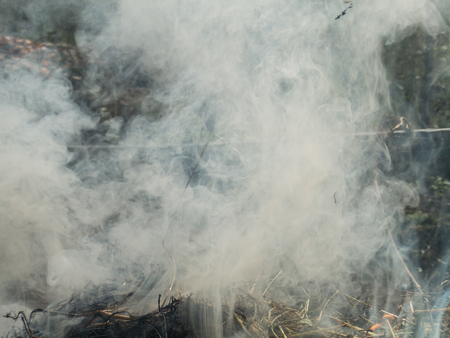 pit fall: Fire smoke in the autumn forest