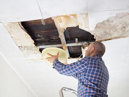 seau d eau: Man collecte de l'eau dans le bassin du plafond. Panneaux de plafond endommagés. Banque d'images